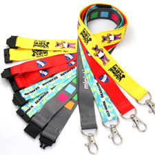 Lanyard  Multi Colour